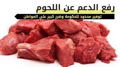 Photo of رفع الدعم عن اللحوم .. سياسة فاشلة لحكومة الأزمات تخنق الوطن والمواطن